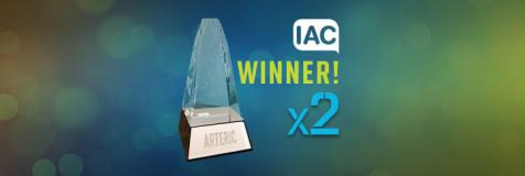 "Crystal trophy next to banner ""IAC Winner! Best marketing website. Best professional services websites"""