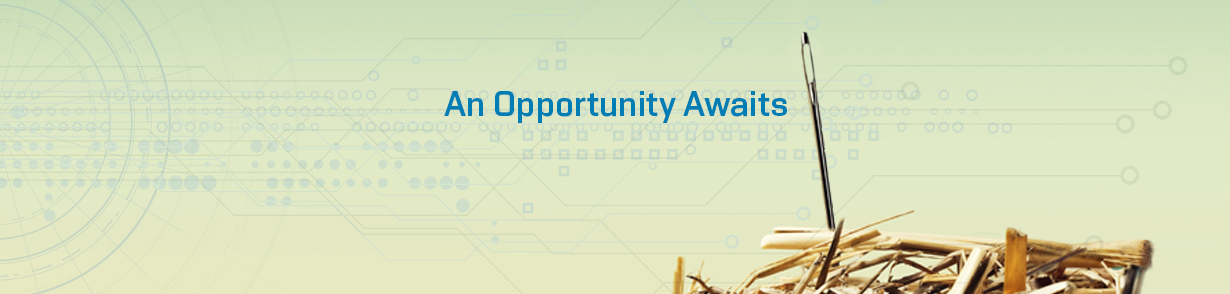 "Headline ""An Opportunity Awaits"" above a haystack with a needle sticking out of its top"
