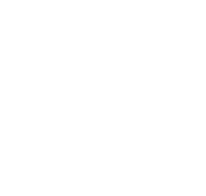 Discovery, planning, sprint iterations, end game, release